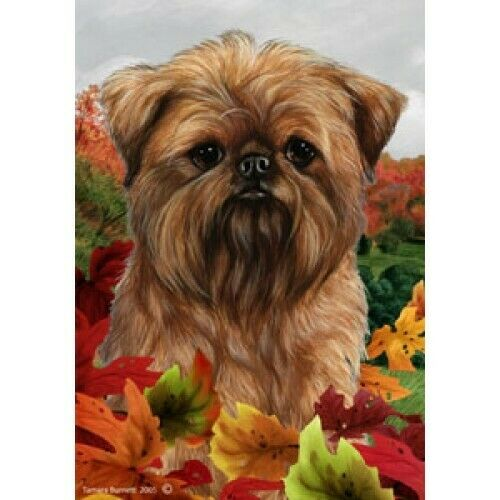 Fall House Flag - Brussels Griffon 13128