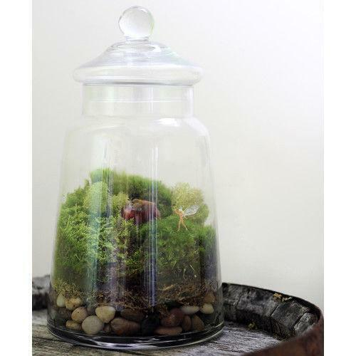 terrarium figurines