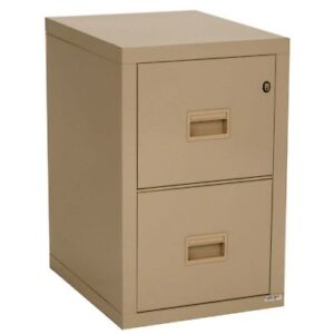 2 Drawer - Metal Filing Cabinet (QTY: 2 cabinets for sale)
