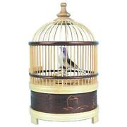 Bird Music Box
