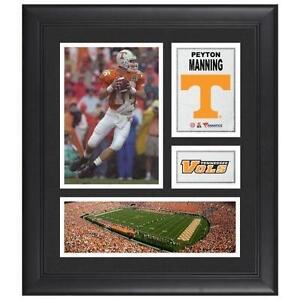 Peyton Manning Jersey  Football-NFL  fcd614e9c