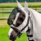 Horse Sweet Itch Rugs