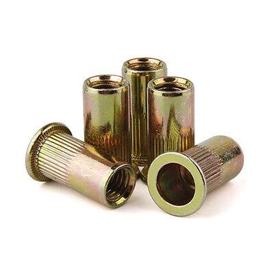 Flat Head Threaded Rivets Zinc Plated Steel Rivet Nut Rivnut Nutsert 12-13