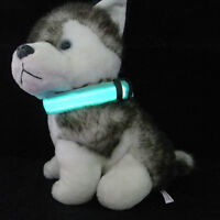 COLLIER CHIEN AU DEL , LED DOG COLLAR      Suivre     |     Part