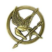 Hunger Games Pin