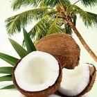 Hair Care Coconut Oils