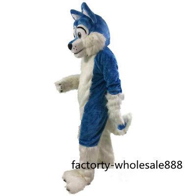 Long Fur Blue Husky Dog Mascot Costume Fox Adults Fancy Suit Unisex handmade UK