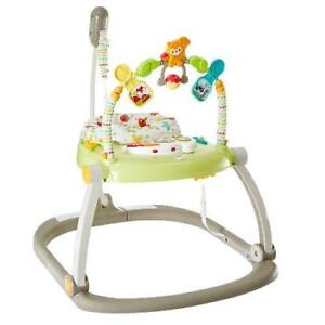 OB Fisher-Price Space Saver Jumperoo
