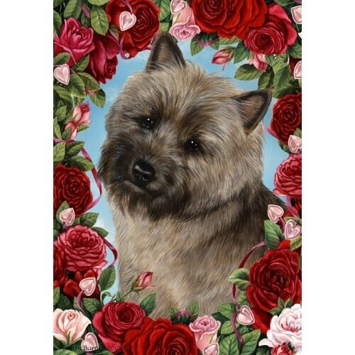 Roses House Flag - Brindle Cairn Terrier 19326