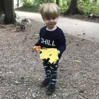 Au Pair Wanted - Awesome Toddler Looking For An Awesome Nanny To