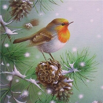 Charity Christmas Cards - Robin