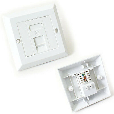 Single Port CAT6 IDC Wall Outlet Face Plate -1 Way RJ45 Network Ethernet Socket