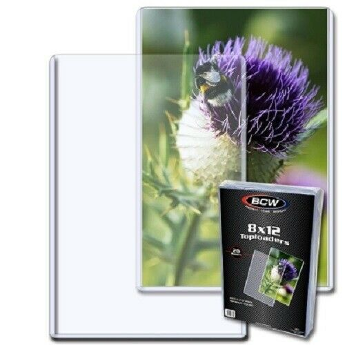 Quality BCW 8x12 Topload For Photographs & Documents Holder Clear PVC Pack of 20