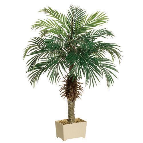Plastic Palm Tree Ebay
