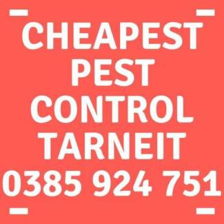 Cheapest and best Pest Control in Melbourne