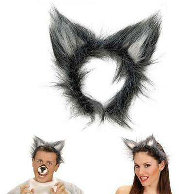 WOLFSOHREN AUF HAARREIF Wolf Ohren Fasching Kostüm Wolfkostüm Zubehör (Wolf Kostüm Ohren)