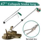 Unbranded Snake Snake Handling Reptile Supplies