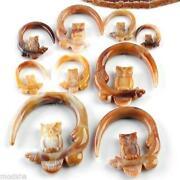 Owl Ear Gauges