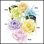 Haargummi Blume