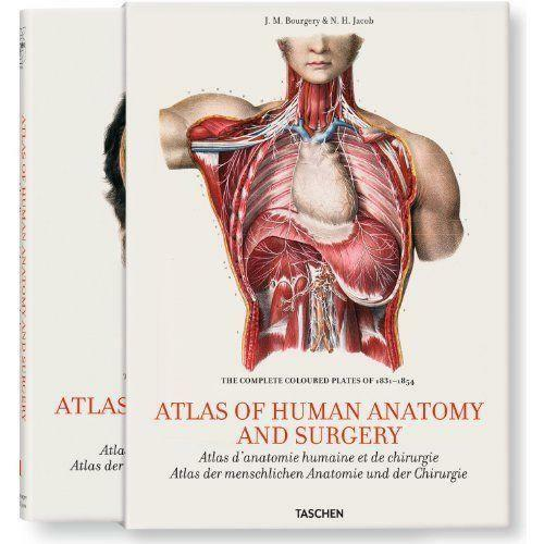 Atlas Of Human Anatomy Books Comics Magazines Ebay