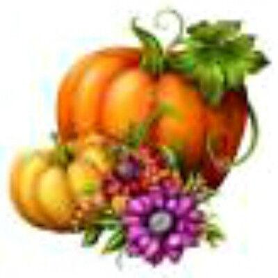 Autumn Halloween Nails (20 water slide nail art  decals fall Halloween pumpkin flowers 3/8)