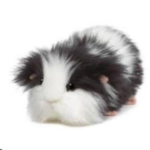 Guinea Pig Toys | eBay