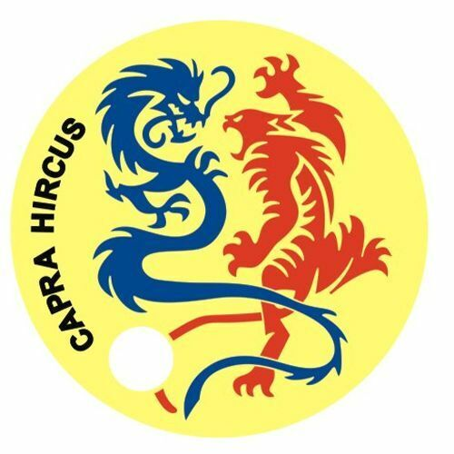 Pathtag 10986  - Dragon  &  Tiger  -geocaching/geocoin/ *Retired- Only 50 Made*