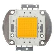 30W LED Chip