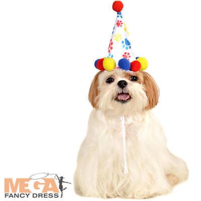 Paw Print Birthday Hat Dog Fancy Dress Pompom Party Animal Pet Costume - Party Animal Kostüm Hunde