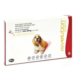 REVOLUTION FOR DOGS - 22-44 LBS (Heartworm and Fleas)