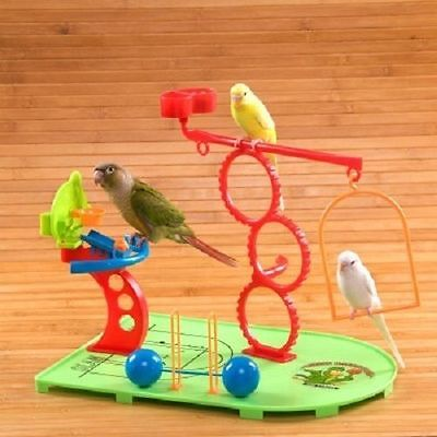 Bird Play Stand for Small Parrots Birdie Basketball Gym