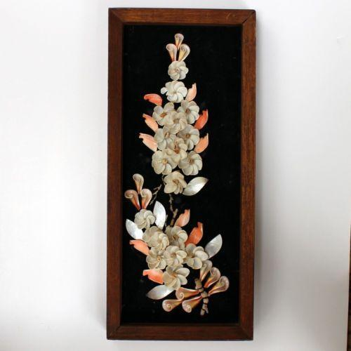 Framed Seashell Art Ebay