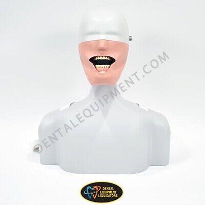 Frasaco Dental Patient Simulator Life Size Torso Manikin Mounts To Dental Chair