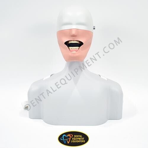 Frasaco Dental Patient Simulator Life Size Torso Manikin Mounts to Dental Chair