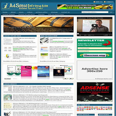 Established Google Adsense Affiliate Website Turnkey Business Free Hosting