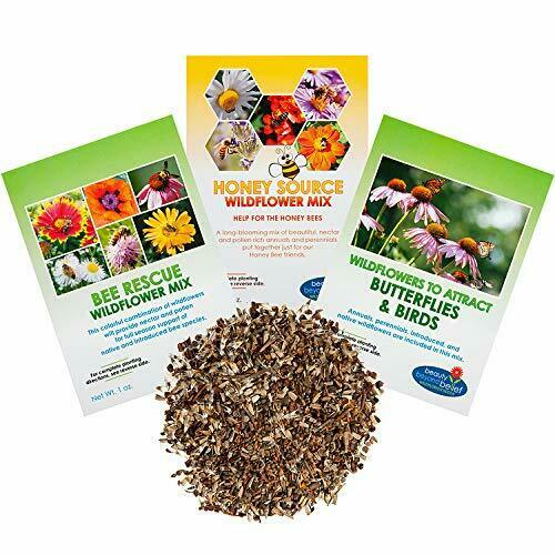 Wildflower Seeds - Pollinators Collection - Bulk Annual/Perennial Seed - Open-Po