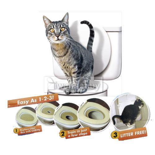 Train Cat To Use New Litter Box