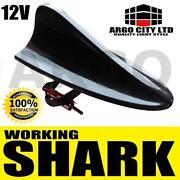 Shark Fin Car Aerial