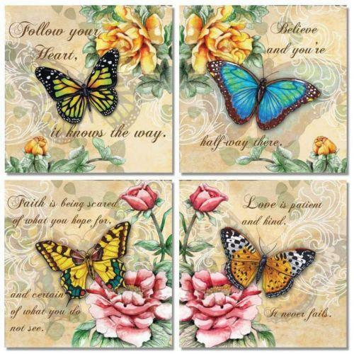 Butterfly Pictures | eBay