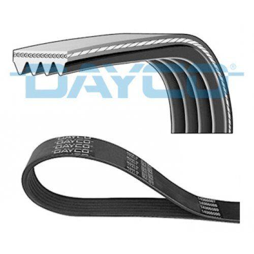 DAYCO V-Ribbed Belts 4PK855