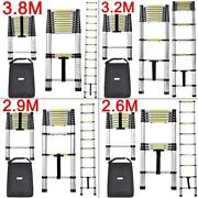 2M Telescopic Ladder