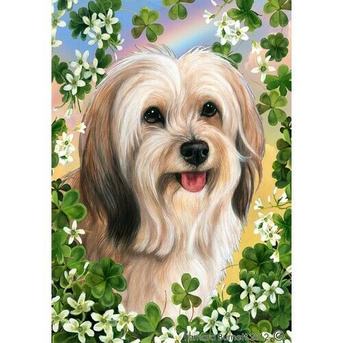 Clover House Flag - Cream Sable Tibetan Terrier 31479