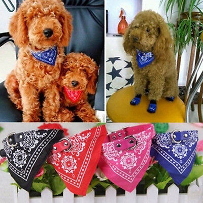 - Pet Dog Cat Bandana Scarf Collar Small Adjustable Neckerchief Pet Ties Witty