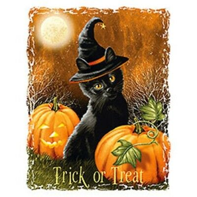 Trick or Treat   Black Cat Halloween   Tshirt    Sizes/Colors - Halloween Coloring Black Cat