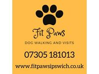 Fit Paws Dog Walking and Visit Service