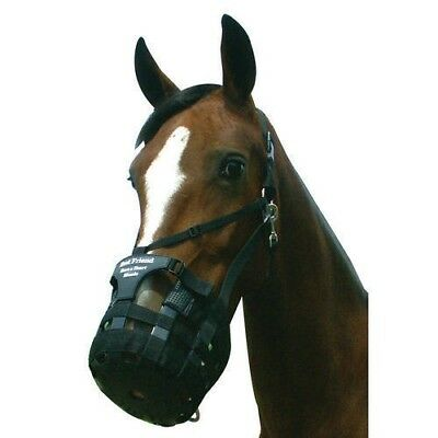 Best Friend Have a Heart Muzzle with Breakaway Halter Prevents Muzzle