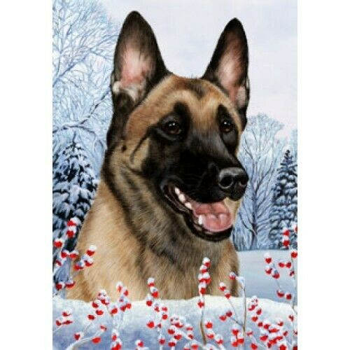 Winter Garden Flag - Belgian Malinois 152511