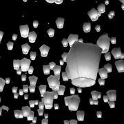 White Chinese Lanterns