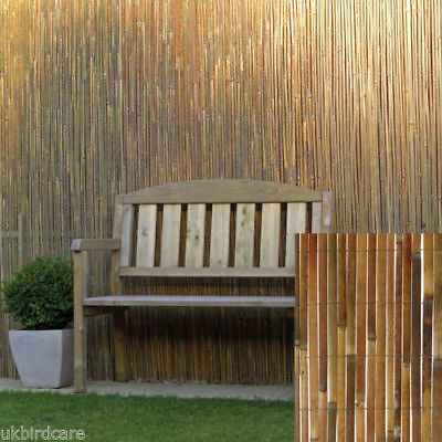 2m tall X 6m long natural split bamboo screening for privacy wind breaking fence