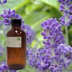 Lavender Essential Oil Gallon